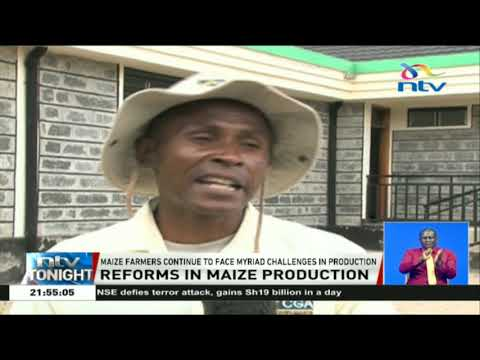 Maize task force proposes a warehouse system to ensure good prices