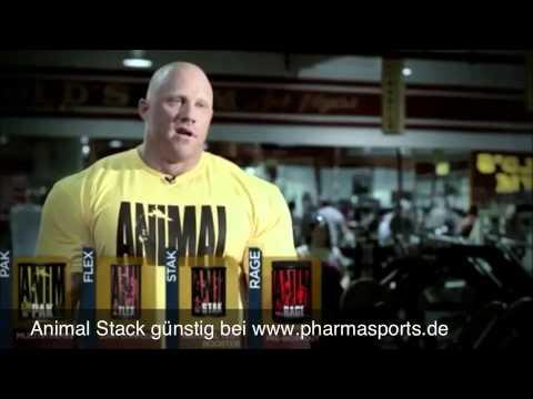 Universal Nutrition, Animal Pak günstig im Bodybuilding Shop Pharmasports