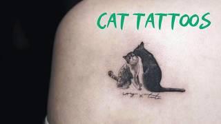 Cat Tattoos - Veterinary Video