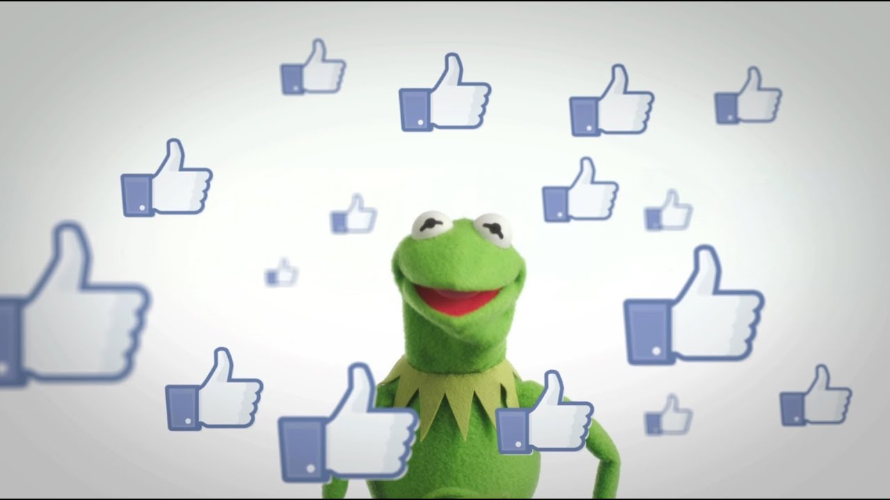 Kermit The Frog Reduced To Begging For Facebook Likes
