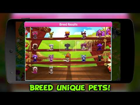 Video of Pet Stories