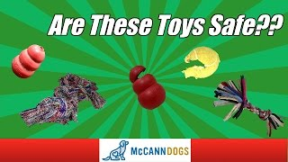 Dangerous Toys For Dogs