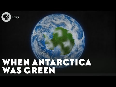 Watch To Explore the Green and Lush Past of Antarctica