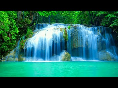 🔴Peaceful Relaxing Music LIVE 24/7: Music for Deep Sleep. Music for Spa and Massage. Yoga Music
