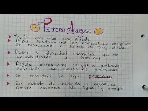 Fresas DM2