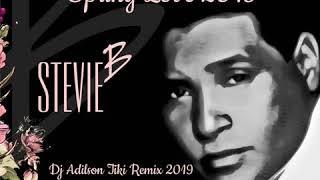 Stevie B Spring love Dj Adilson Tki Remix 2019...