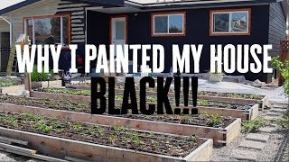 My neighbours thought I was crazy for doing this! | EMF Free Home