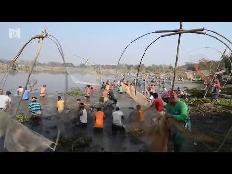Hundreds go fishing to celebrate harvest festival in India