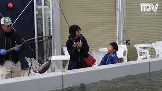 「徳島新鮮なっとく市」がマリンピアにオープン