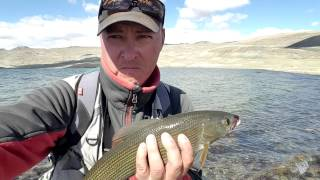 Рыбалка на харюза 4х4 в саянах
