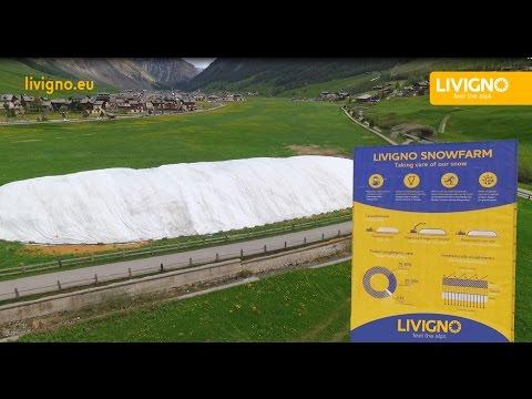 Snowfarm: jak w Livigno przechowują śnieg?  - © Livigno.eu