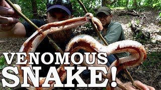 Catch and Cook {Clean} DANGEROUS SNAKE on a STICK! Ep02 | 100% WILD Food SURVIVAL Challenge!