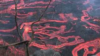 Feuerflüsse am Piton Fournaise