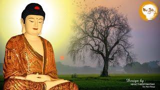 Nhạc Thiền Tĩnh Tâm - Chỉ cần nghe 3 phút tiêu tan mệt mỏi phiền muộn cuộc sống #Relax Music
