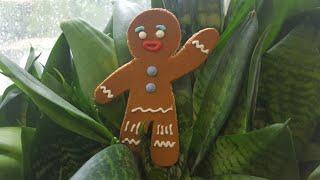 Идеальное пряничное тесто🍀лучший рецепт🍀 Best gingerbread cookie dough