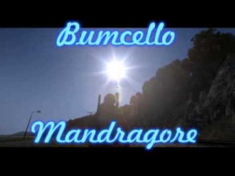Bumcello - Mandragore