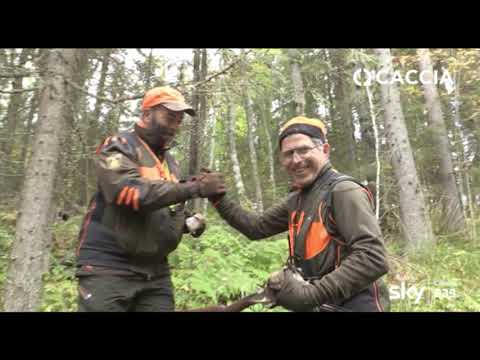 La pesca su video shlino