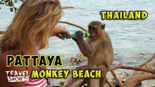 Тайланд, Паттайя | Остров Ко Лан |  Monkey Beach Pattaya
