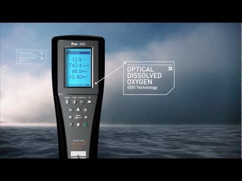 YSI ProODO Optical Dissolved Oxygen Meter Video