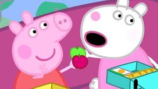 Peppa Pig En Español Episodios Completos 🚌 La Excursión 🚌 Peppa Pig 2019 | Dibujos Animados