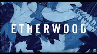 Etherwood - Revive (feat. Logistics & Eva Lazarus)