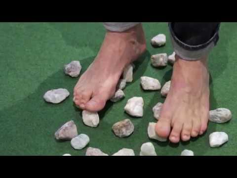 Die Kerne auf den Beinen auf den Fingern
