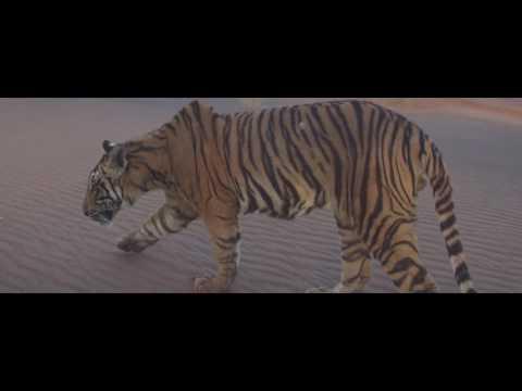 Paranday Full Video  Bilal Saeed  Latest Punjabi Song 2016