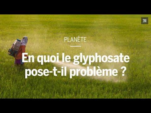 En Colombie, le président souhaite la reprise des pulvérisations de glyphosate contre la drogue