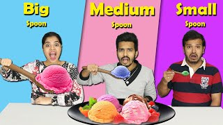 Big Vs Medium Vs Small Spoon Food Challenge | Hungry Birds