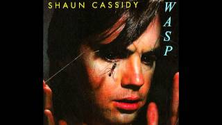 Shaun Cassidy - It's My Life (The Animals Cover)