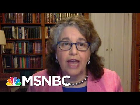 FEC Commissioner On Election Planning: 'Our Democracy Has To Survive This Crisis' | MSNBC