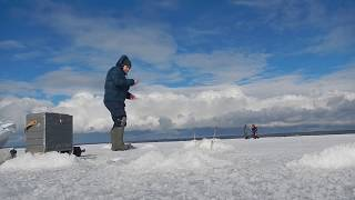 Ловля корюшки на финском заливе места