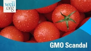 GMO Scandal: Why You Should Avoid Genetically Modified Food