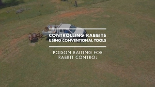Poison baiting for rabbit control
