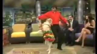 Chó say cùng vu di u salsa Chuy n l Dân trí