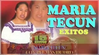 MARIA TECUN   CON PLUMAS DE ORO