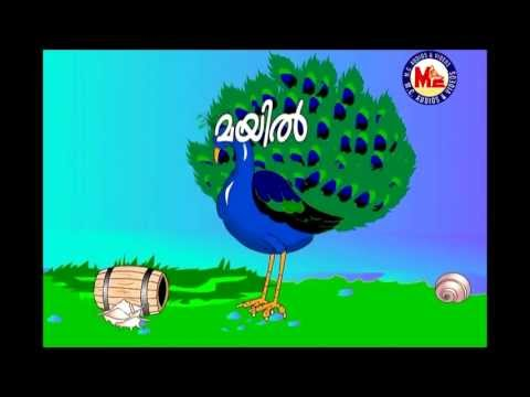 മയിൽ | THE PEACOCK | Edutainment Video for Children