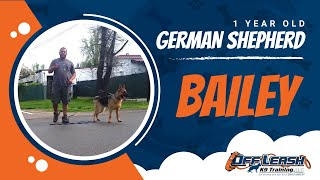 1-Year Old German Shepherd with some aggression issues! German Shepherd Trainers in Virginia!