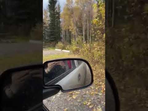 Video Of Lower Chatanika/Olnes Pond, AK