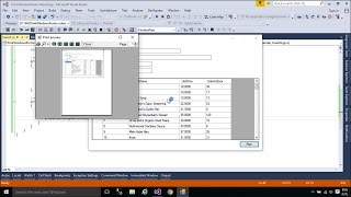 C# Tutorial - Print Windows Form