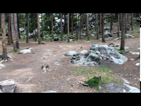Video Of Crazy Woman Road - dispersed camping, WY