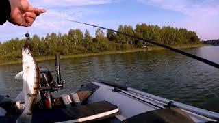 Тверская область зубцовский район рыбалка