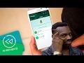 WhatsApp Sufre Caída Mundial | El Recuento