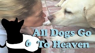 All Dogs Go To Heaven 2.0 E6