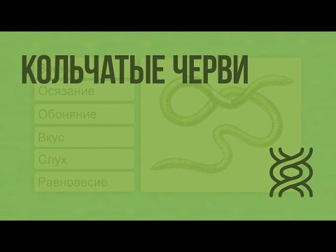 Анализы на лямблии ярославль