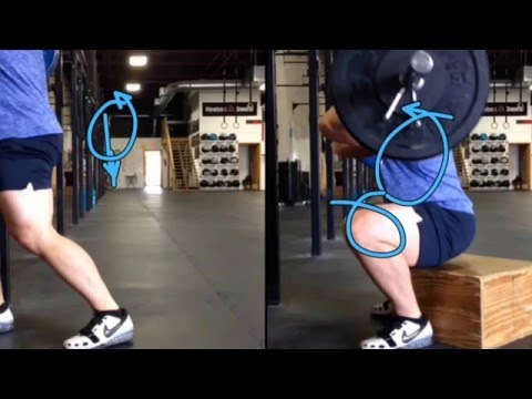 Front box squats and the stretch shortening cycle
