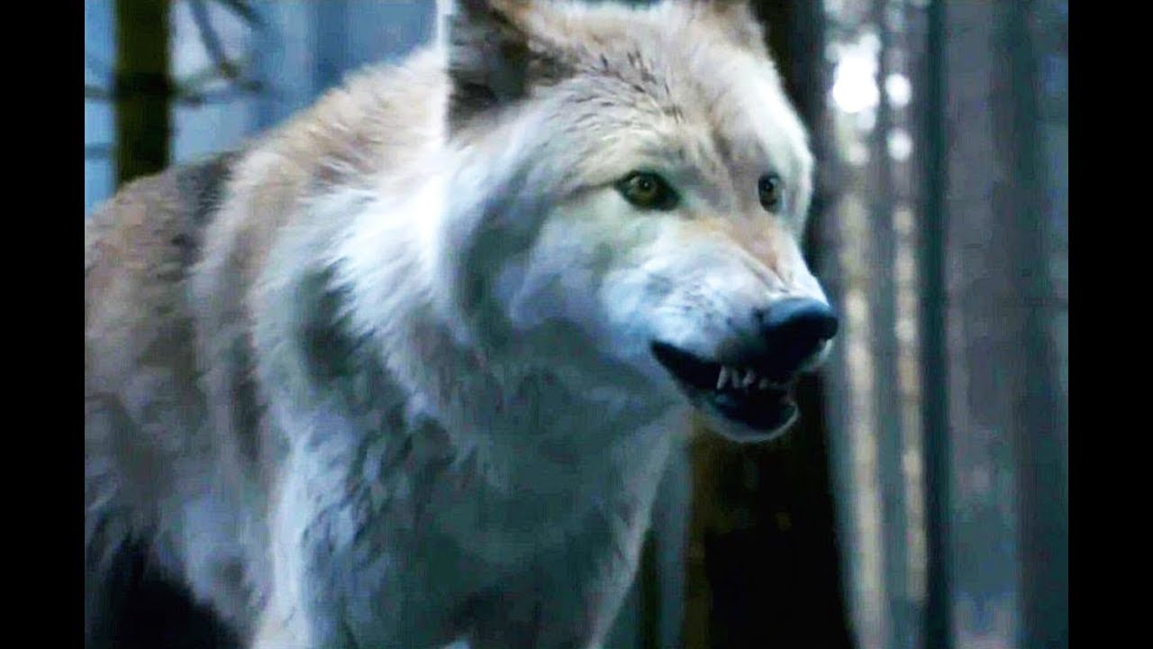 Peter Dinklage: Stop Trying To Buy Dire Wolves! thumbnail
