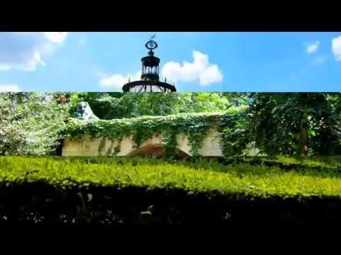 Париж ботанический сад