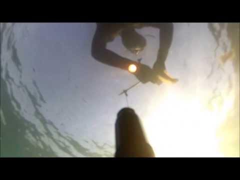 Su pesca nel video di Crimea