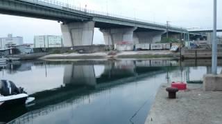 釣りポイント紹介。大阪府泉大津
